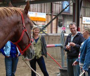 Top-5 netwerktips voor paardencoaches